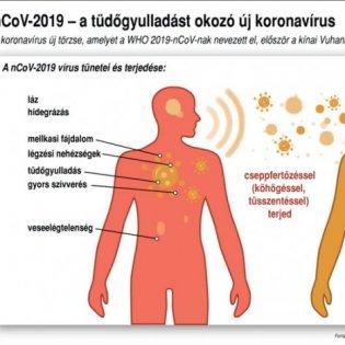 Járványügyi tájékoztatás
